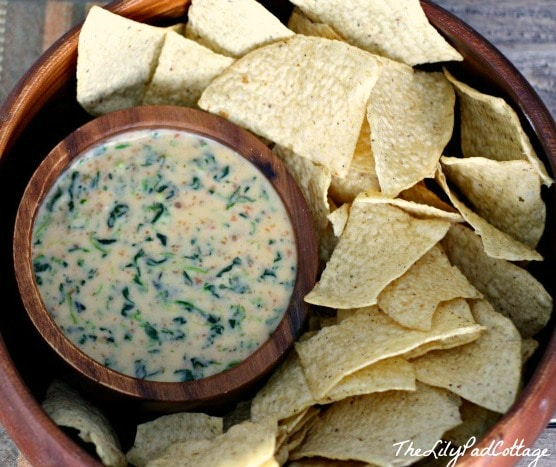 natural_queso_dip2