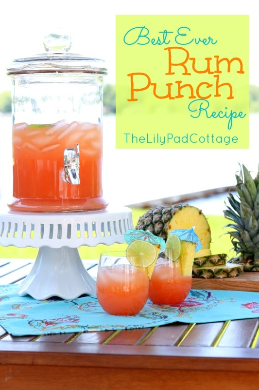 Rum punch recipe the lilypad cottage for Best mix drink ever