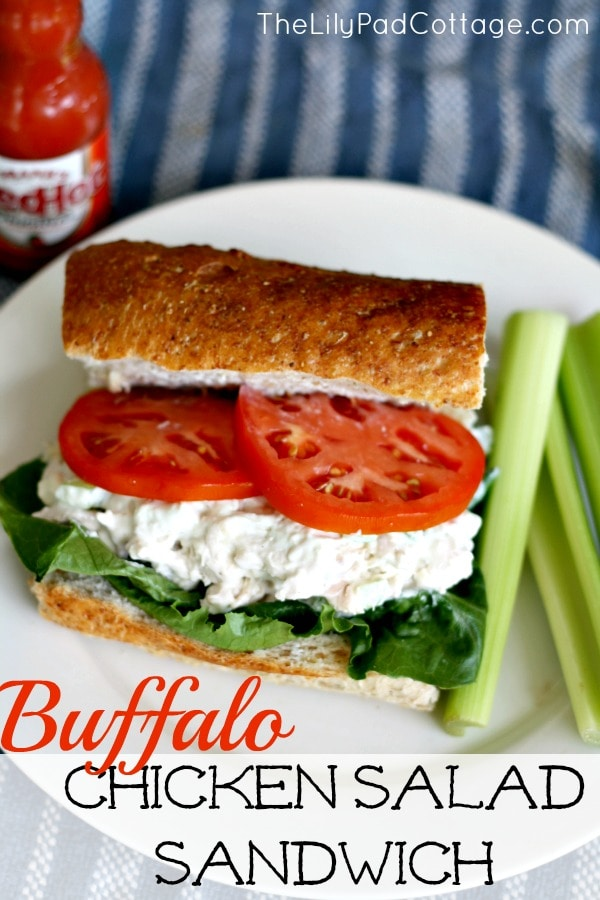 Buffalo Chicken Salad Sandwich - Delicious and healthy spicy blue cheese chicken salad recipe made with greek yogurt.