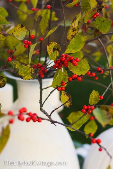 berries-vase