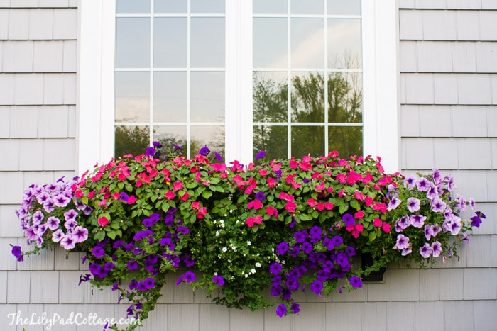 how to build a simple flower box window