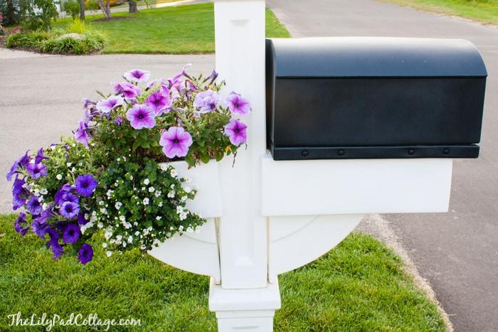 Flower box tips