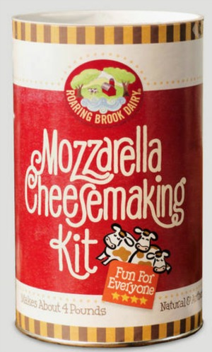 Mozzarella Cheesmaking Kit