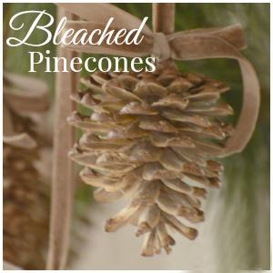 BLEACHED PINECONES-button-stonegbleblog