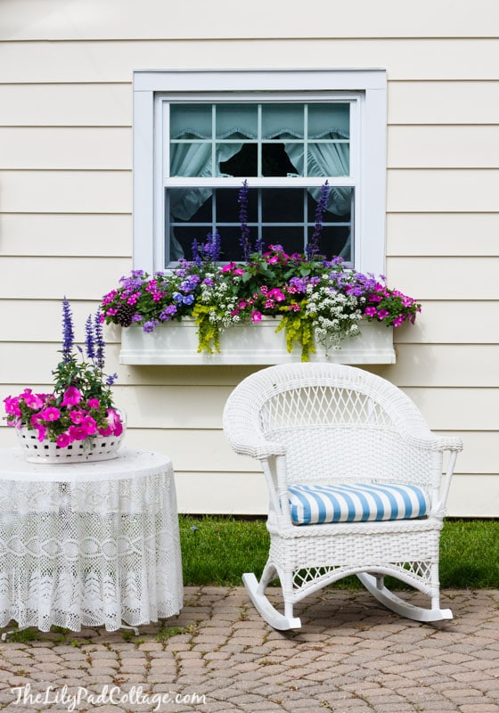 5-gorgeous-window-box-tips