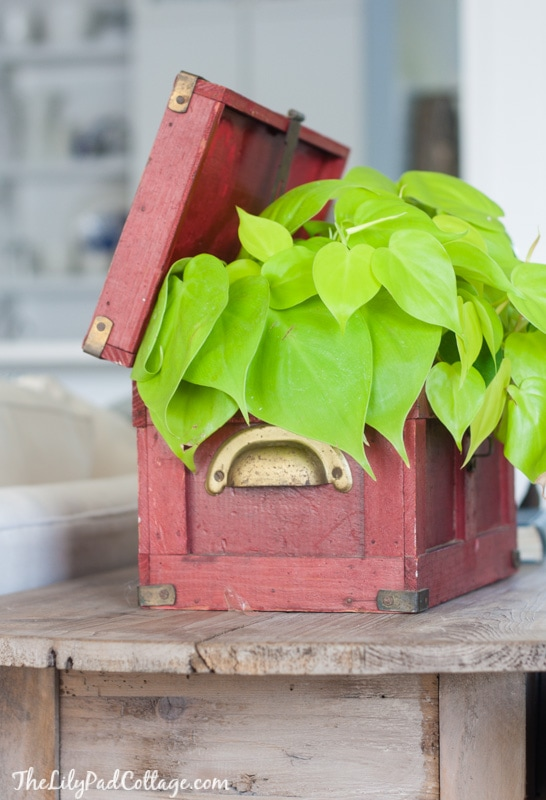Red wooden planter