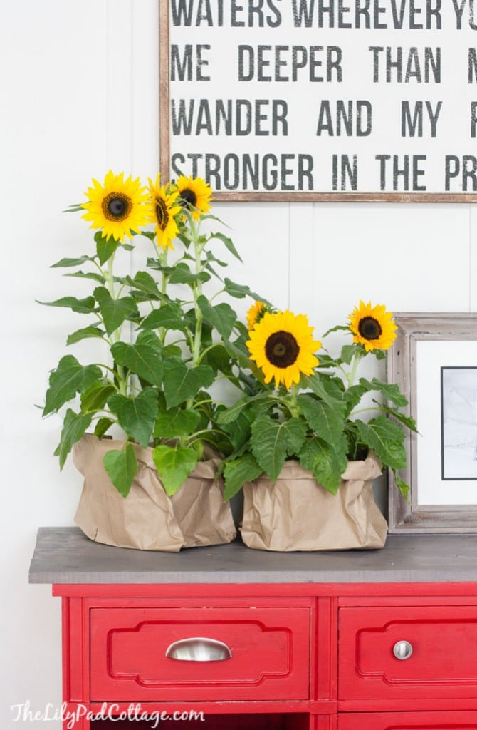 Fall Home Decor - sunflowers