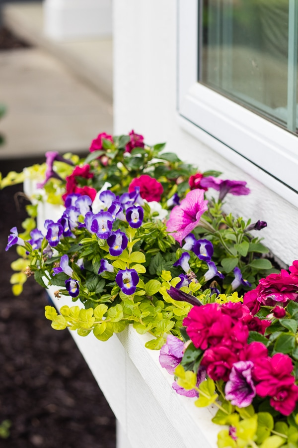 Window flower box tips