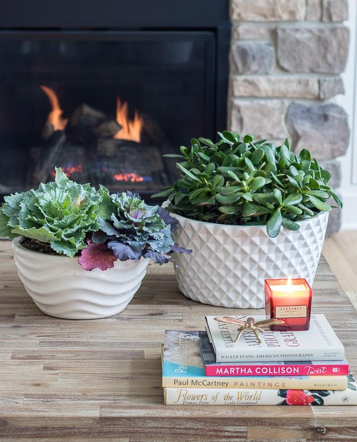 fall kale planters