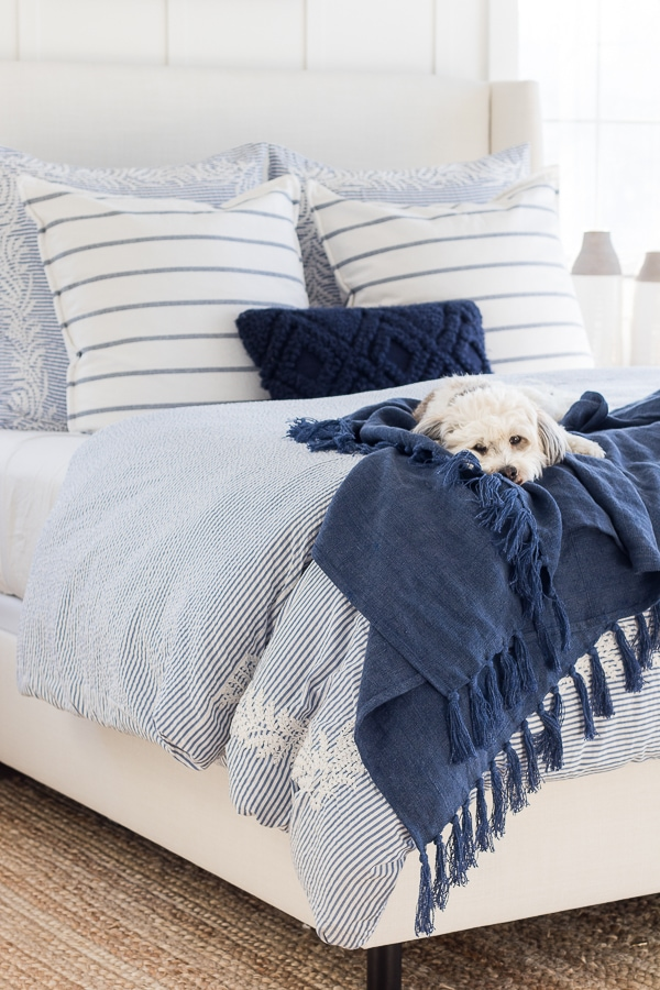 white dog blue bedding