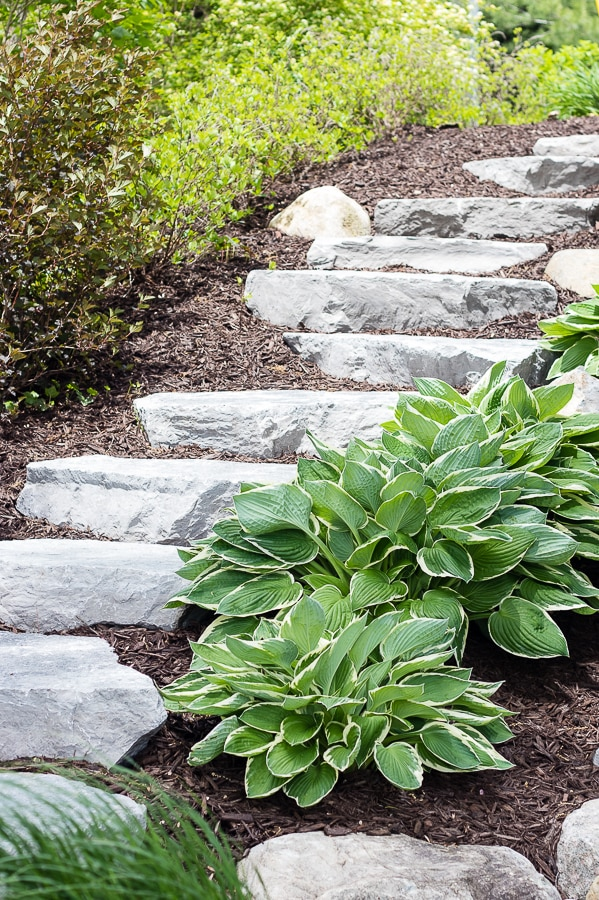 hostas landscaping design stone steps