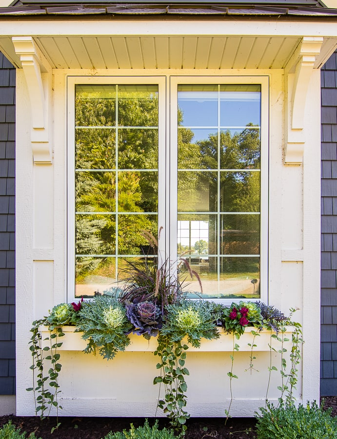 Fall cabbage and kale window box idea Flower box ideas