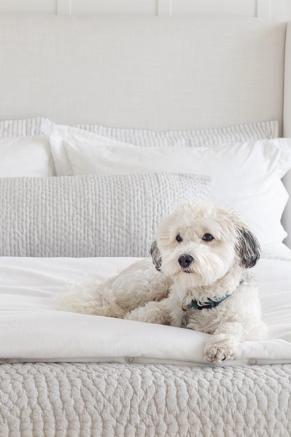 gray blanket white duvet cover white and gray bedroom