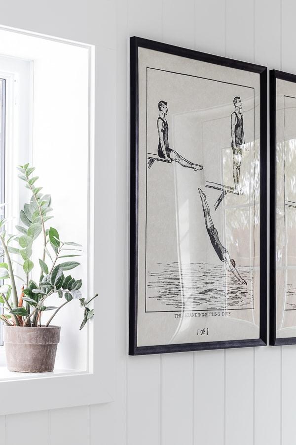 framed vintage diving prints